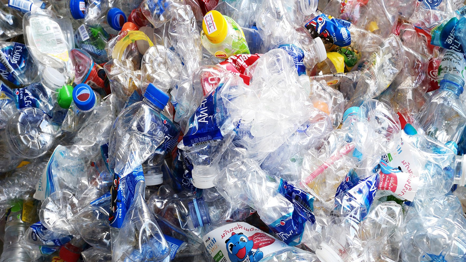 Study on prevention of plastic waste by multi-actor partnerships published