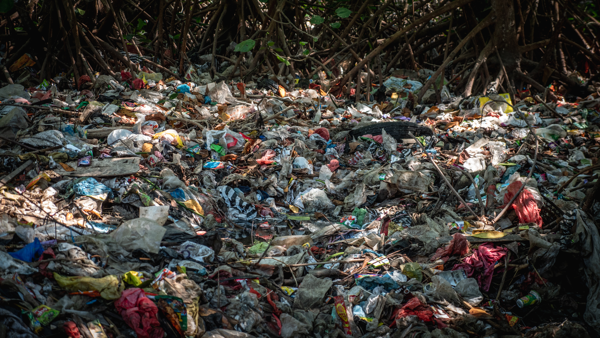 Creating value in plastic through digital technology in Indonesia: Comprehensive sustainability in plastic waste prevention and recycling