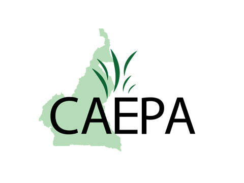 Community Agriculture and Environmental Protection Association – Cameroon